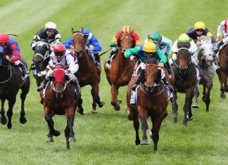 Horse Racing Australia
